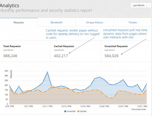 Monthly Performance & Security Report